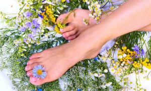 Варикозные вены на ноге – лечение народными средствами и рецептами